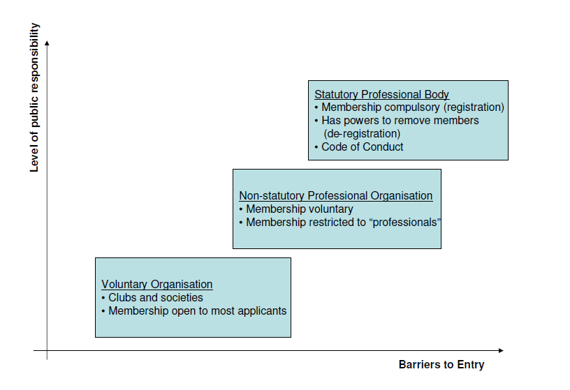 Diagram 1 - professional