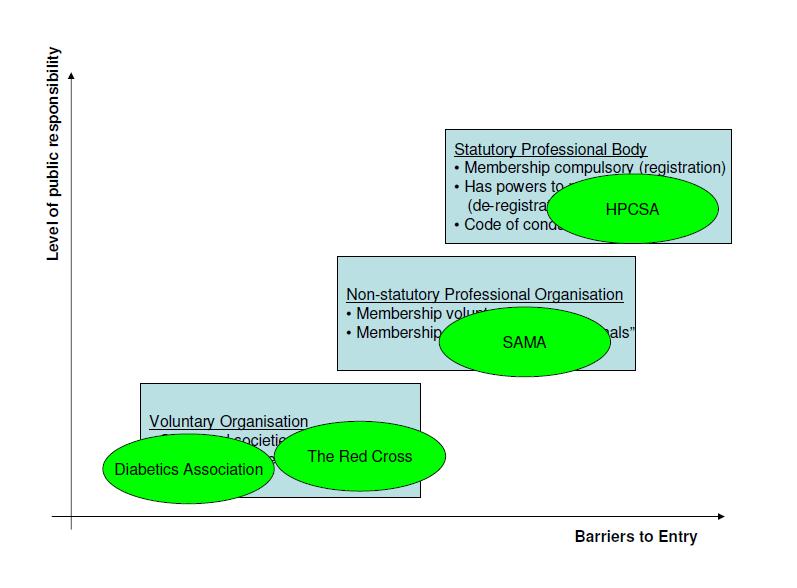 Diagram 2 - professional